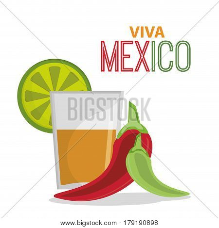 viva mexico greeting tequila celebration vector illustration eps 10