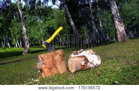 Wood And Ax