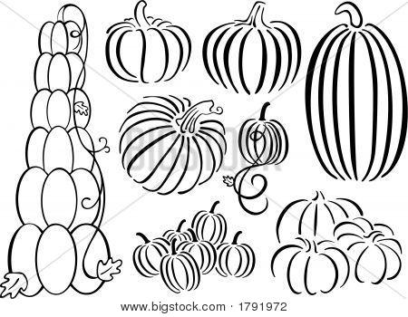 Pumpkin Design Set