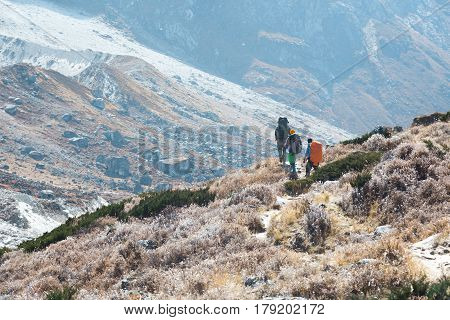 Mountain Valley with wild Flora and severe rocky moraine on Background and group of Climbers with Backpacks walking on Footpath