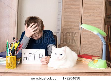 Schoolboy with learning difficulties doing home assignment. Sad and tired pre teen schoolboy sitting in stress working doing homework asking for help with cat on his desk.