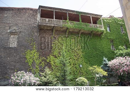 House With A Balcony Overgrown With Grapes