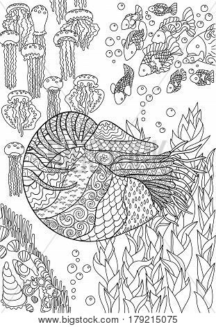 Nautilus with high details. Adult antistress coloring page. Black white sea mollusk. Abstract pattern with oceanic elements for relax coloring for grown ups in tracery style. Vector