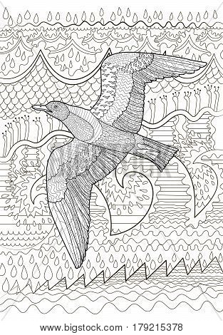 Flying seagull with high details. Adult antistress coloring page. Black white sea bird. Abstract pattern with oceanic elements for relax coloring for grown ups in zentangle style. Vector