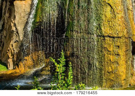 Tropical nature with water running vertically on greenish and yellowish rocks on bright summer day