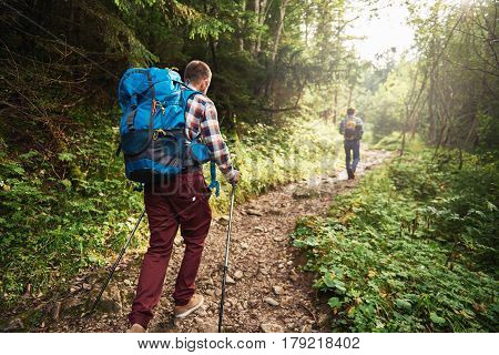 Rearview of two young men wearing backpacks and carrying trekking poles walking together along a trail deep in the forest