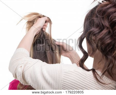 Working hairstylist from back on white background