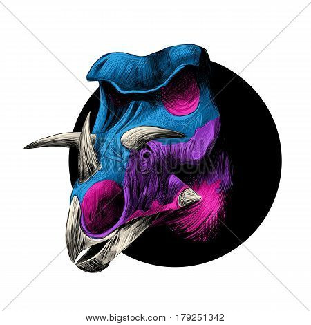 the head of a dinosaur breed of Triceratops peeks out from behind the black circle color image color blue and pink