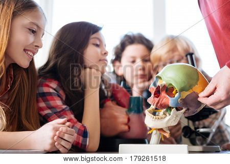 Informative lecture. Imaginative determined nice kids sitting at the table while attending a biology class and studying anatomy