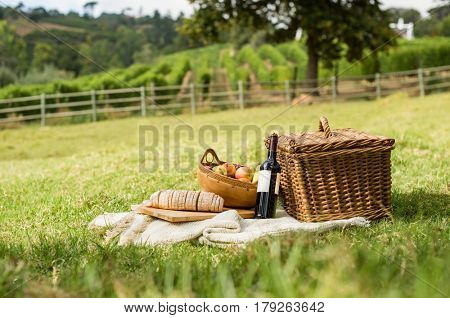 Picnic basket on grass with food and drink on blanket. Picnic lunch outdoor in a field on sunny day with bread, fruit and bottle of red wine. Pic nic on green grass with landscape in the background.
