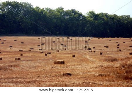 Hay Is Bailed