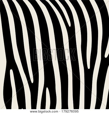 Pattern. Imitation print of skin of zebra. Black stripes on gray background.
