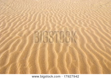 Dry rippled golden sand, ideal for backgrounds and textures