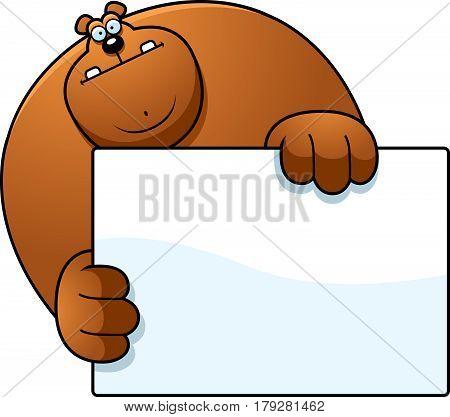 Cartoon Bear Hiding