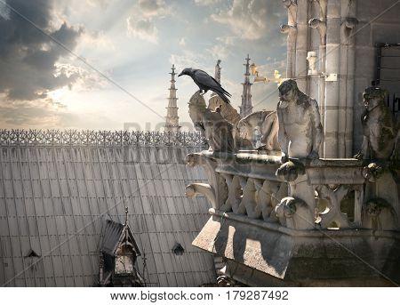 Statues of chimeras on Notre Dame de Paris, France
