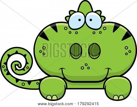 Cartoon Chameleon Peeking