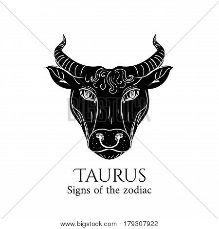 Signs of the zodiac. Taurus hand draw. Black silhouette and white details. Vector illustration isolated on a white background.