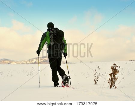 Tourist Checking  Snowshoe. Hiker With  Winter Jacket And Big Backpack Walk In Snow