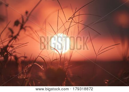 Sunset in the city of Campo Magro metropolitan Region of Curitiba State of Paraná Brazil.