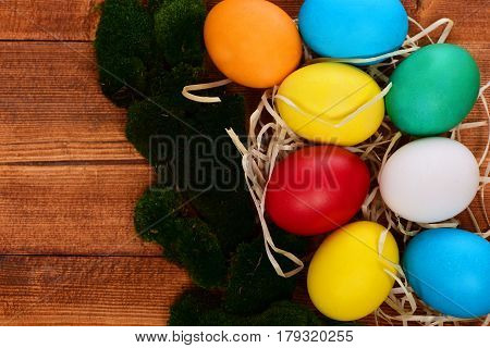 Painted Easter Colorful Eggs With Straw Nest And Green Moss