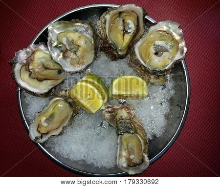 Plate of oysters in mother-of-pearl shell with a slices of lemon