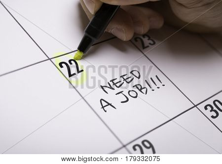 Need a Job!!!