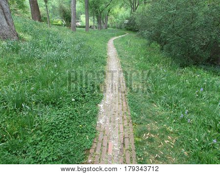 A  Faded  Brick  Path  through  Green  Grass  at  Dumbarton  Oaks  in  Washington  D.C.