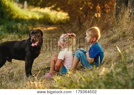 Two children walking with a dog breed Labrador