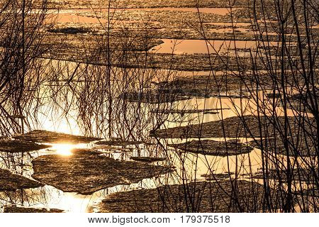 Abstract colorful spring background with ice floating on the water willow branches and reflections in the lake against the background of orange sunset light
