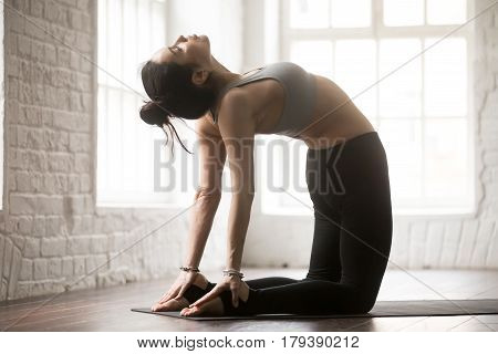 Young attractive yogi woman practicing yoga concept, stretching in Ustrasana exercise, Camel pose, working out, wearing black sportswear pants and bra, full length, white loft studio background