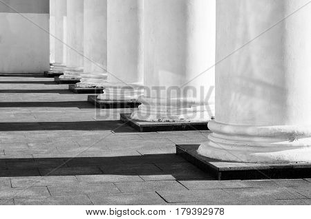 White classical column bases with contrasting shadows in perspective. Architectural geometric black and white composition.
