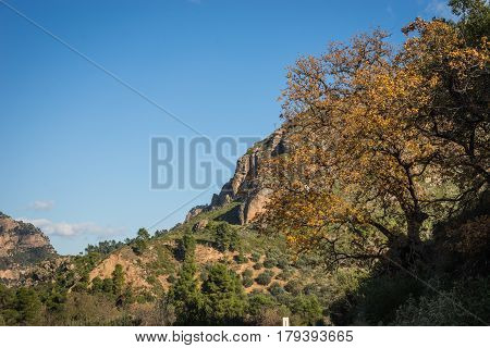 Landscape with touristic cog railway in Vouraikos gorge, Peloponnese, Greece