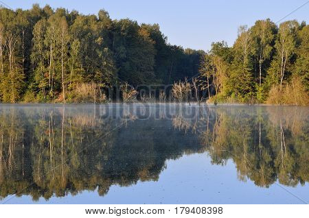 Flooded beach with dry pine forest reflected in the river with haze. The river Neman, Belarus.
