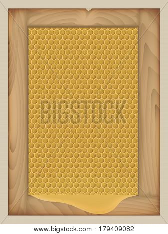 vector honey in the comb in a wooden frame. resulting puddle of honey. pattern in yellow colors