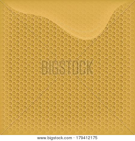 vector honey in the comb. flowing honey. the background image for your design
