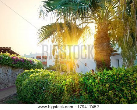 Bright sunrise over resort hotel in Egypt