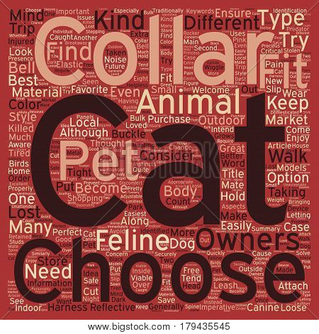 Different Kinds Of Cat Collars text background wordcloud concept