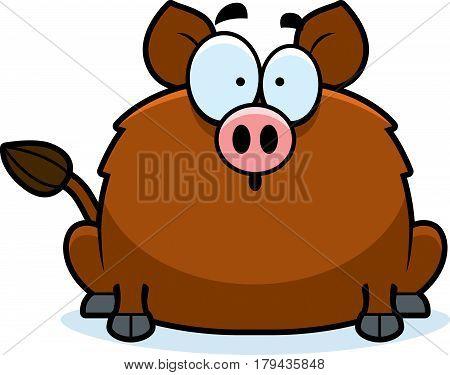 Surprised Little Boar