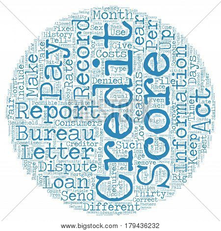 Did Your Credit Score Today text background wordcloud concept