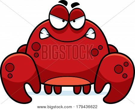 Angry Little Crab