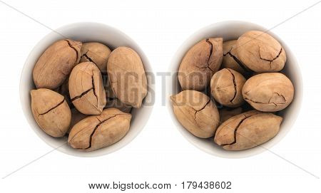 Whole Sweet Fried Pecan Nut Or Carya Illinoinensis With Cracked Shell Isolated