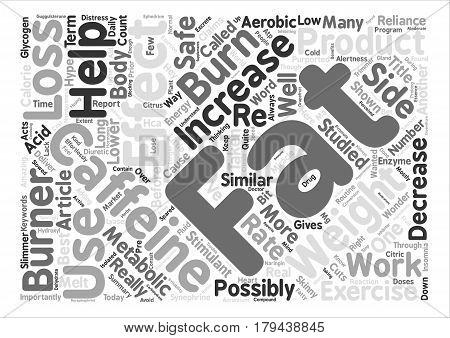 The Skinny on Fat Burners Word Cloud Concept Text Background