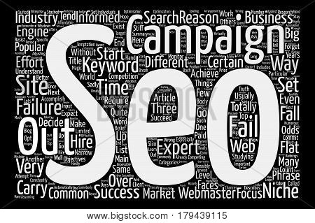 Three of the most common reasons why SEO campaigns fail text background word cloud concept