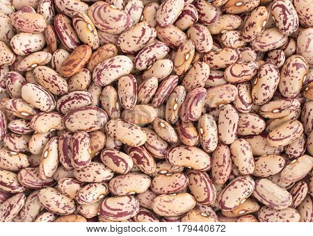 Dry Pinto Beans Backgrpund