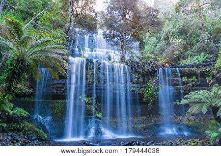 Waterfall In Tropical Rainforest. Tasmania