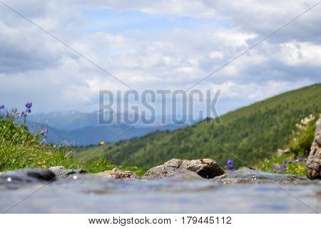 mountain brook flows through the stones. Shallow focus