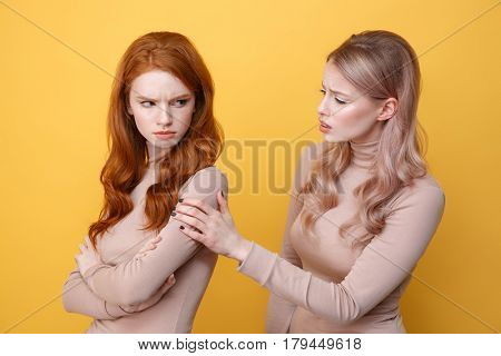 Photo of angry offended redhead lady standing near blonde woman friend over yellow background.