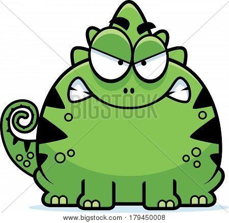 Mad Little Lizard
