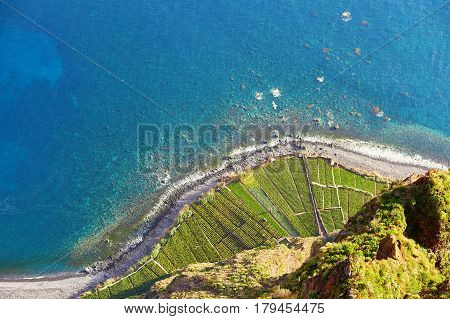 Aerial View Of Terrace Fields And Ocean Shore At Cabo Girao, Madeira