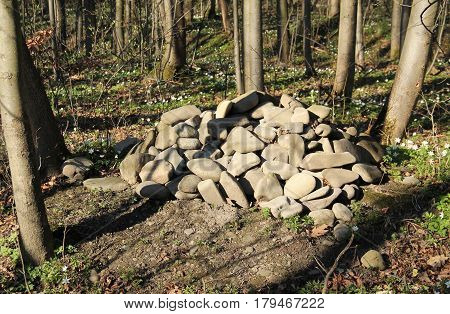 grave of a pet, mound of stones in the forest
